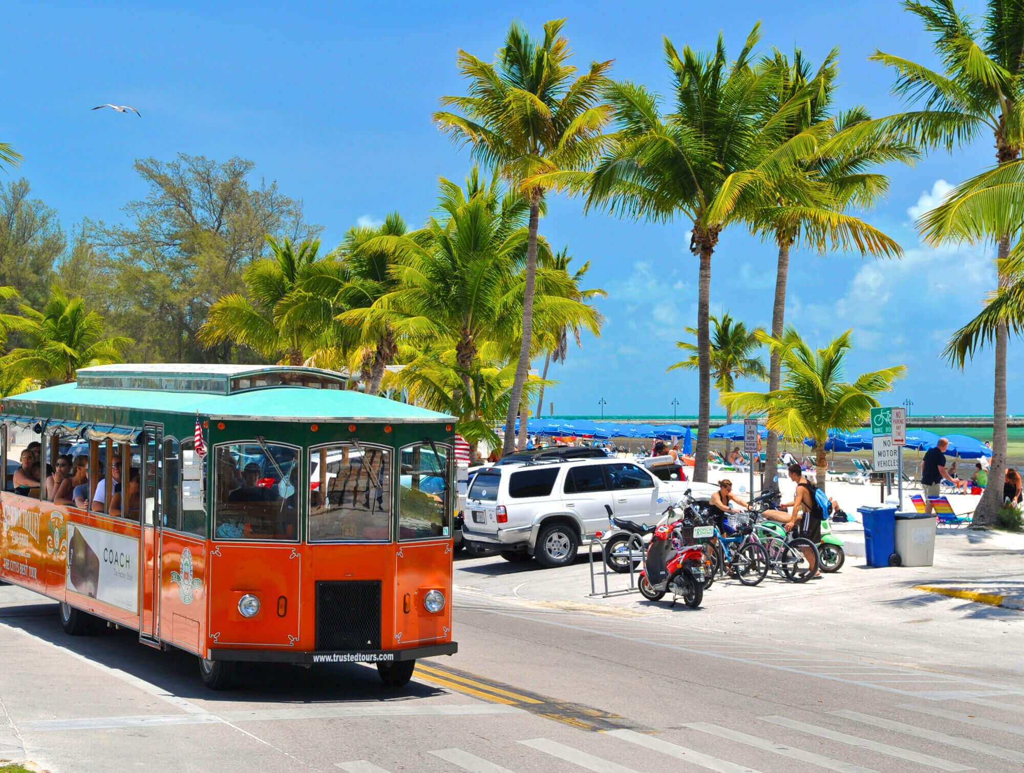 Old Town Trolley driving by a busy beach in Key West, FL