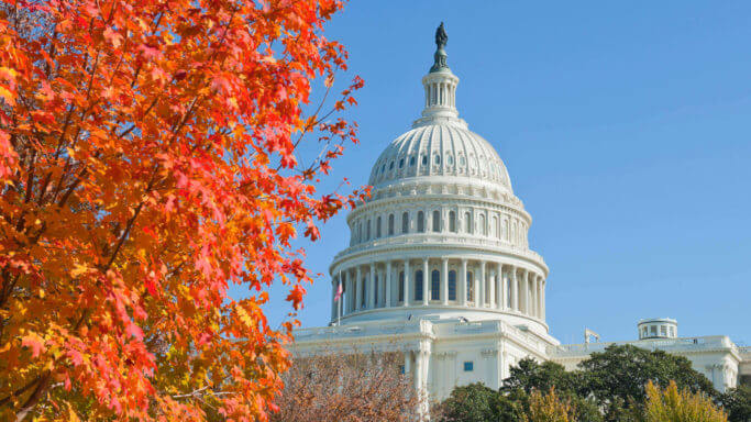 Mid-range view of the top of the Capitol Building flanked in the foreground by a tree with red fall colored leaves in Washington DC