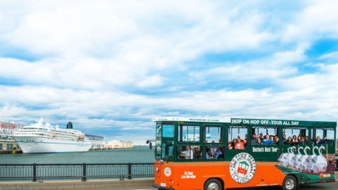 boston cruise excursions