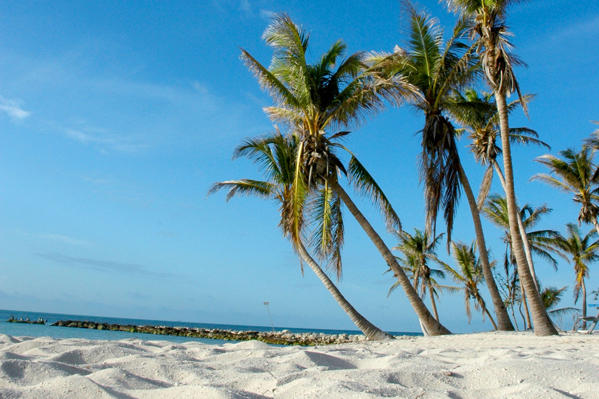Higgs Beach Key West Information Guide