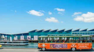 San Diego Shore Excursion for Cruise Ship Guests