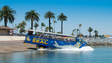 san diego seal tours ticket
