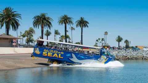 san diego seal tours ticket