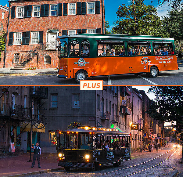 Savannah Day and Night Tour Package