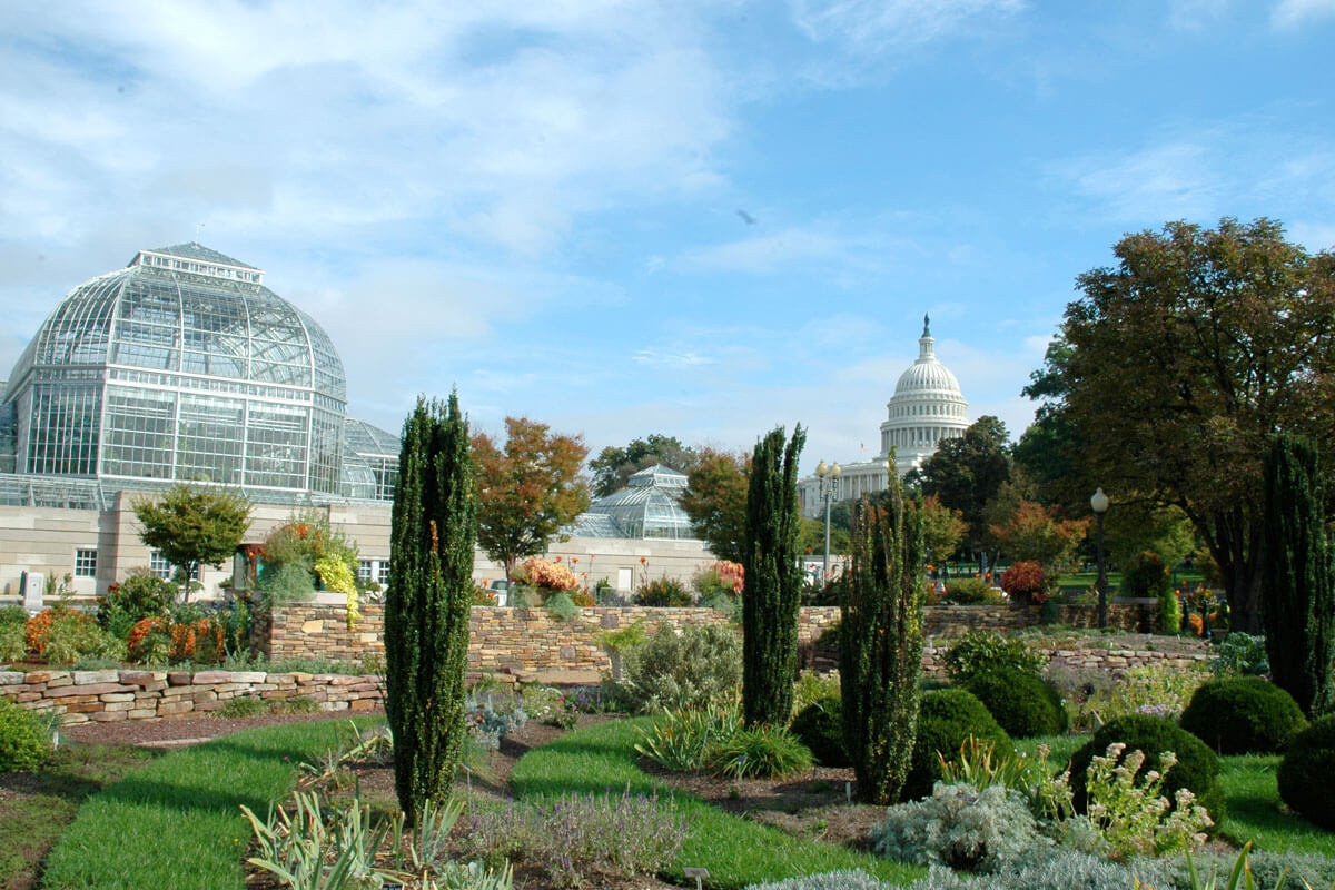 Picture of a garden in the background, a glass encased green house to the left in the background and the top of the US Capitol in the center in the background