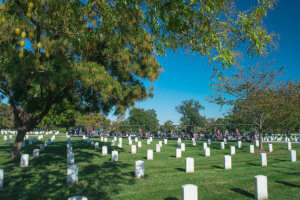 picture of arlington national cemetery tours vehicle driving past rows of tombstones