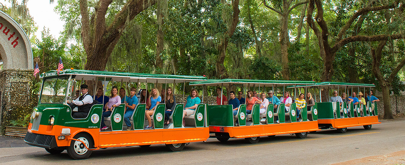 St. Augustine trolley driving past a wall of oak trees and part of the fountain of youth entrance arch